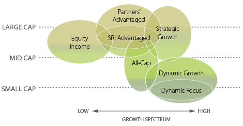 CES chart with large cap, mid cap, small cap, on the y axis and low to high growth spectrum on the x axis and circles showing equity income, partners' advantaged, SRI advantaged, strategic growth, all-cap, dynamic growth, and dynamic focus